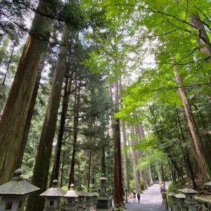 早起きして三峯神社