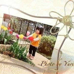 春待ちでワイヤークラフトのフラワースタンドに春よ来い!の写真を飾る♬