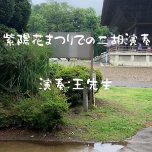 雨の宗吾霊堂、紫陽花まつりにての二胡演奏は王先生の「蘇州夜曲」、どうぞ視聴くださいませ!