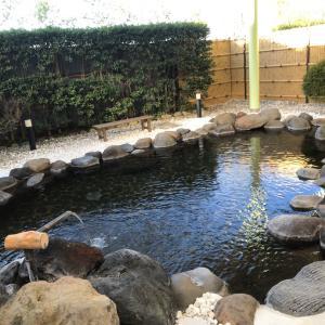 ザ・温泉(那須高原ホテルビューパレス)