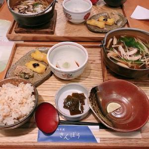 高野山に行ってきました★世界遺産の場所で、精進料理とやきもちを食べました♪