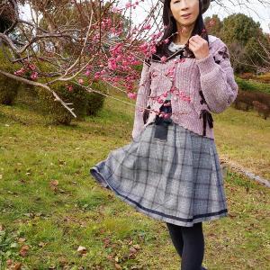 梅の花が咲き始めました(ㆁᴗㆁ✿)