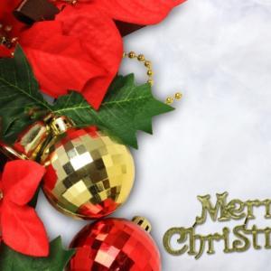 【満席→増2】かわいく記念に残しちゃお!作っておしゃべりも楽しんじゃうクリスマスランチ会♪