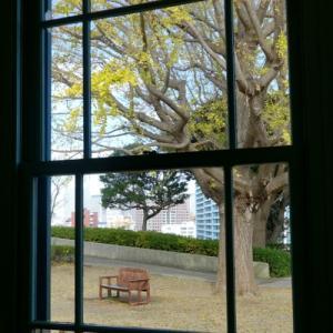 *窓と。。ベンチと。。名残りの彩(いろ)。。♪