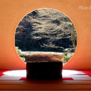 *初春の光がそそぐ円窓。。~鎌倉明月院~♪