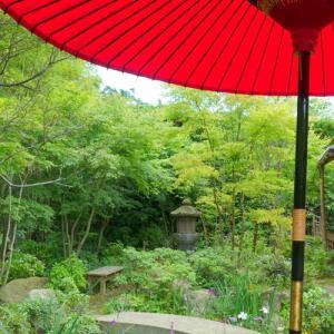 *水無月の紫。。~鎌倉 一条恵観山荘~♪