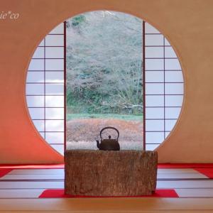 *新春の円窓と。。紅梅と。。~鎌倉 明月院~♪