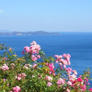 *空と。。海と。。水平線のみえる風景。。♪