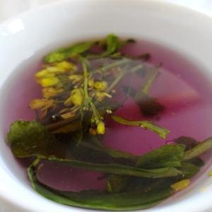 緑のスープと紫のスープ
