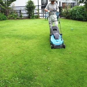 DIY④ 芝生の補修
