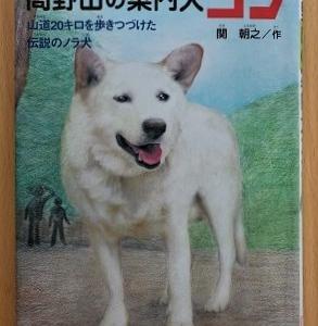 本「高野山の案内犬ゴン」を読んで~ルルとの出会いを振り返りました