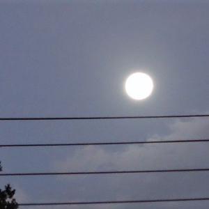 十五夜お月さん~どちらが東の空か西の空か