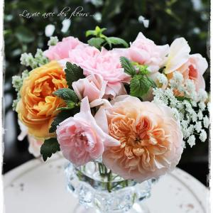 ちいさなベランダガーデン便り~Rose week in small garden