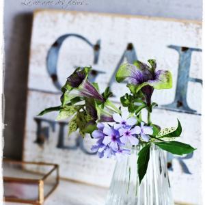 La vie avec des fleurs~花のある暮らし~雨に弱いペチュニアのちいさなブーケ