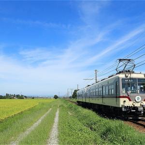青空と稲穂と雷鳥電車・ふたたび(富山地方鉄道)