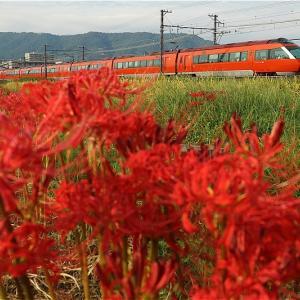 待ちわびた、秋のサイン・その2(小田急電鉄)