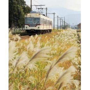 「RM今日の一枚」に(富山地方鉄道)