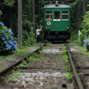 指差確認、緑の中で(箱根登山鉄道)