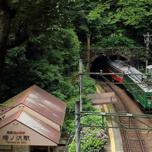 深緑の小駅にて(箱根登山鉄道)