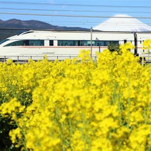 ○要○急の線路端・その1(小田急電鉄)
