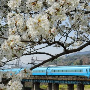 ○要○急の線路端・その3(小田急電鉄)