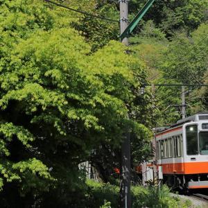 若葉をかすめて(箱根登山鉄道)