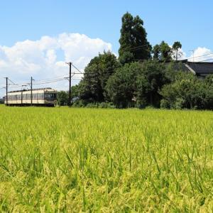 22号、最後の季節(富山地方鉄道)