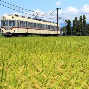22号、最後の季節・その2(富山地方鉄道)
