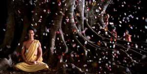 探検488 大乗仏教に原理主義はない