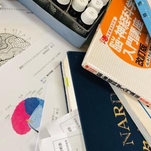 講師とセラピストのためのアロマ研究コース・脳神経系