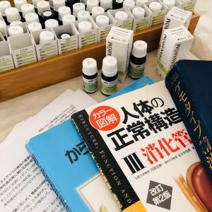 腸管の神経支配と多用に働く精油たち