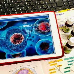 細胞とは何か?アロマに活かす細胞生物学