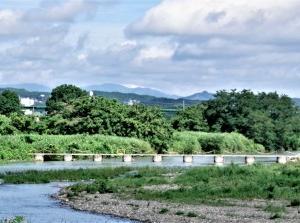 入間川 上橋~新豊水橋 –1アミーゴ 2021-07-11
