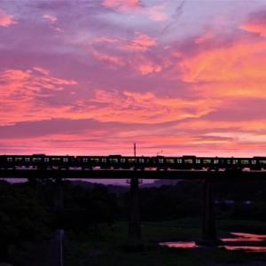 夕焼け列車 入間川八高線橋梁をさまよってみる  2021-07-26
