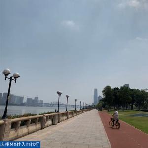 2021年4月 中国広州輸入 広州市内観光
