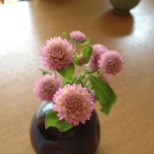 かわいい花が好きなんじゃい
