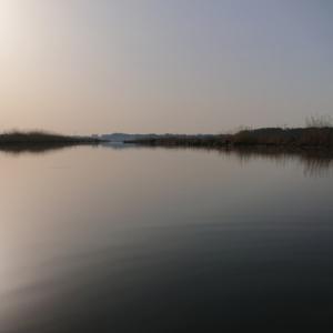 正常に発動  3/21(土)印旛沼水系釣行