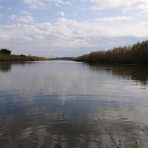 やっちまった   10/30(金)印旛沼水系釣行