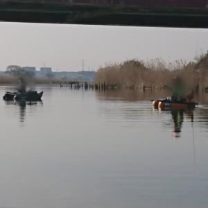 今季初フィッシュ❗  3/27(土)印旛沼水系釣行
