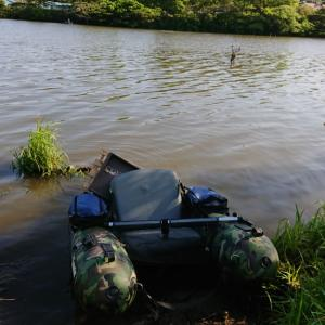 GW釣行①    4/30(金)利根川水系釣行