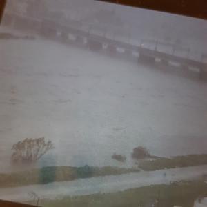 台風19号の強風と豪雨