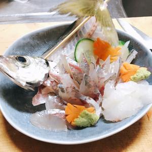 東京湾のアジ釣り