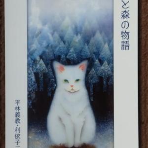 12月猫町個展のお知らせ
