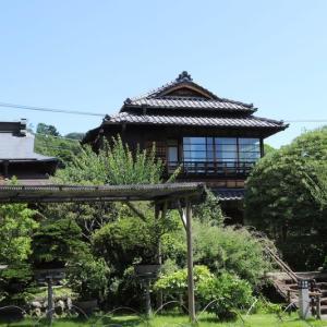 高尾駒木野庭園 紫陽花(2)