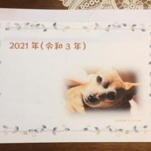 Excel & word  2021年度万年カレンダーを作成!
