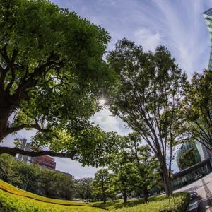 2021/09/19 国立新美術館から見上げる空 ~ by空倶楽部