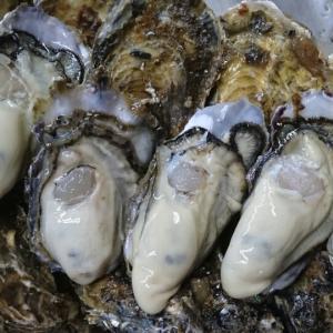 野村水産の牡蠣