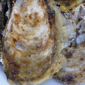 最高(⋈◍>◡<◍)。✧♡野村水産の牡蠣