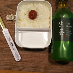 日の丸弁当+300円