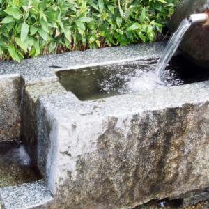 井戸水と水道の水